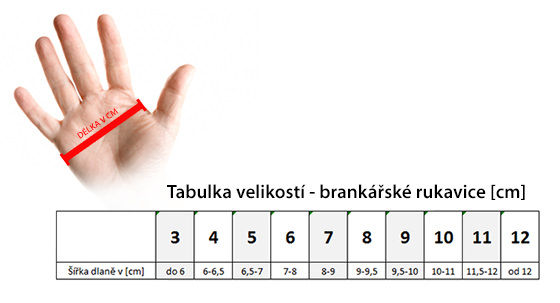 Jak správně vybrat brankářské rukavice  51f426e617